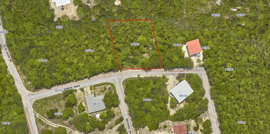 Cayman Brac - Bluff Land - Bonita Cres - (Blk 96E - Pl 153) for sale, 1101, Cayman Brac West Property